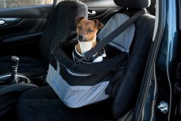 Henry Wag car booster seat