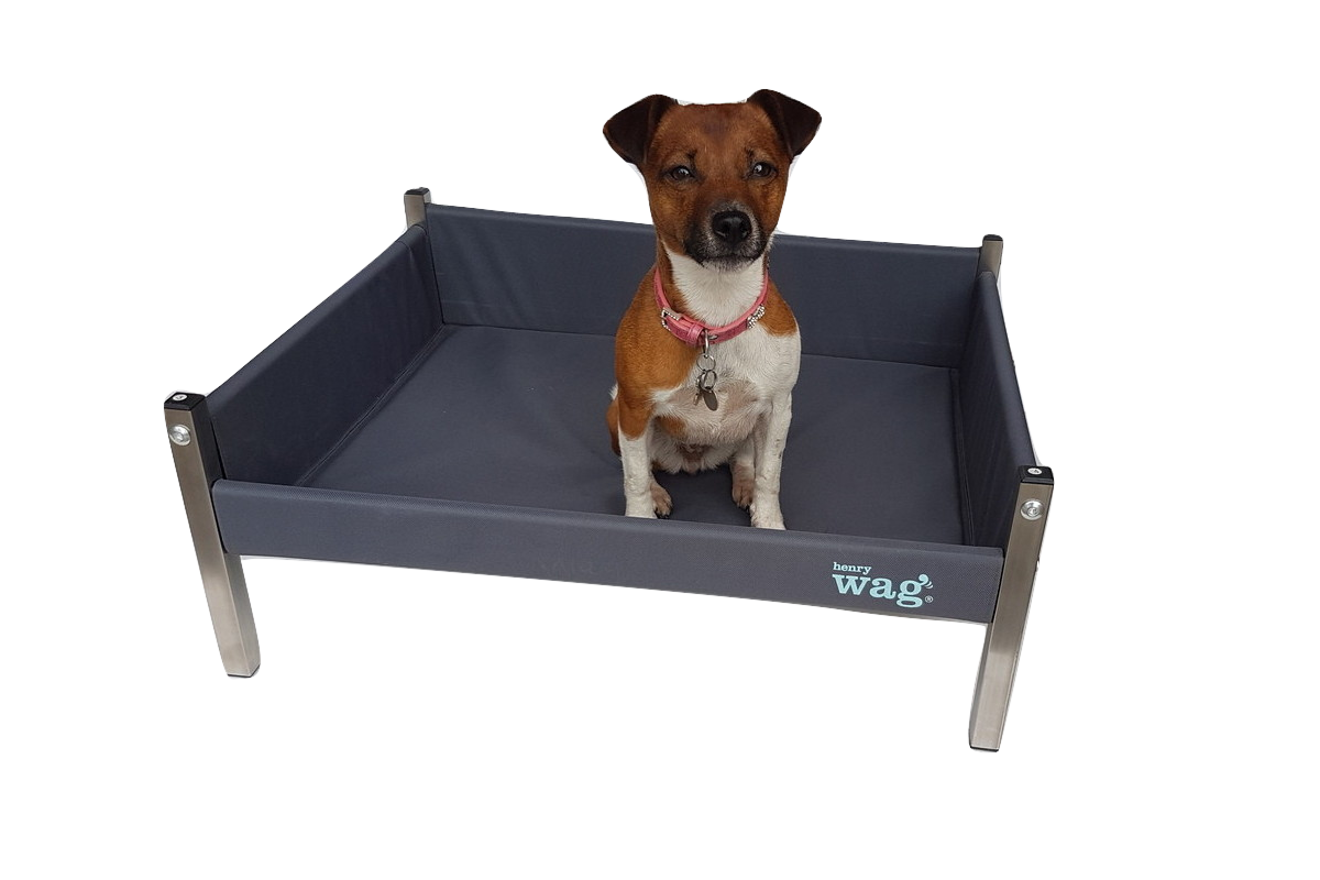 Henry Wag Elevated Dog Bed Henrywag