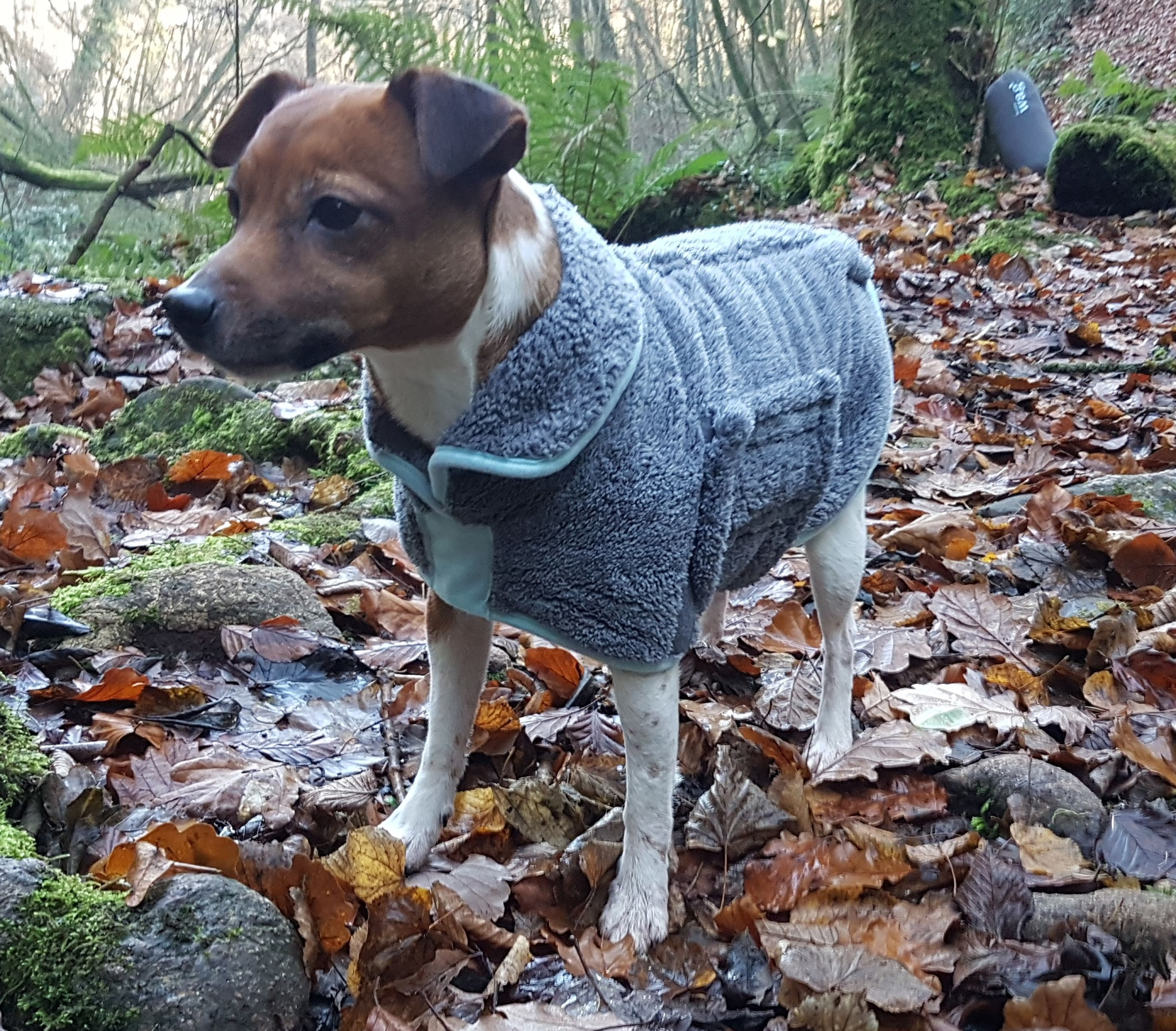 Henry Wag Microfibre Drying Coat